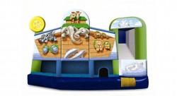The Noah`s Ark